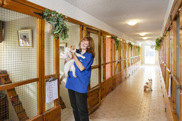 Подбор лучших гостиниц для животных города Воронежа