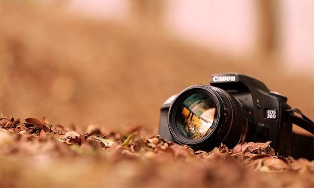 Топ-рейтинг профессиональных фотоаппаратов по качеству снимков в 2020 году.