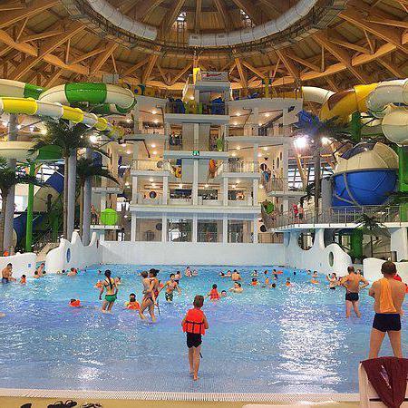 Самые популярные бассейны Новосибирска для детей любого возраста
