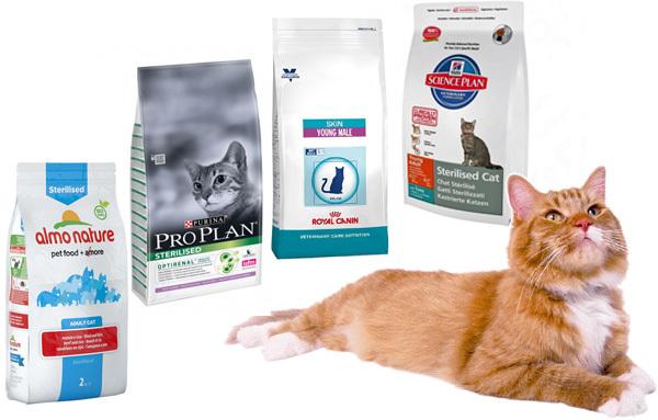 Рейтинг лучших кормов для кастрированных кошек и котов 2020 года состав и стоимость