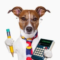 Рейтинг лучших питомников собак в Самаре в 2020 году